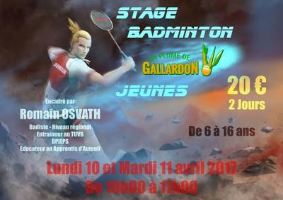 Stage badminton jeunes - La Plume de Gallardon - LPG28